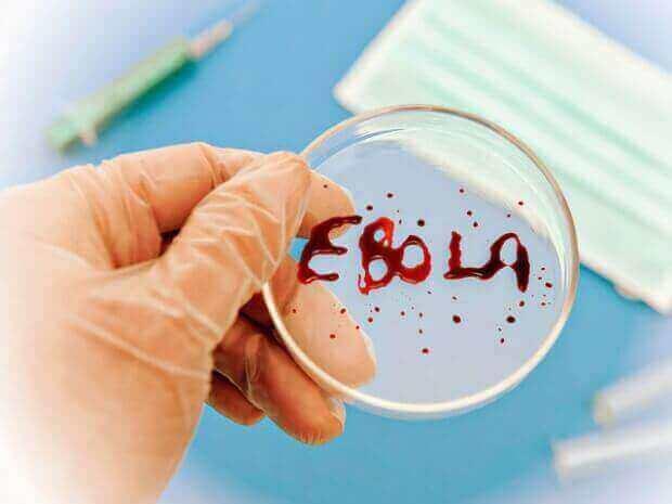 Канадські вчені успішно протестували вакцину проти Еболи