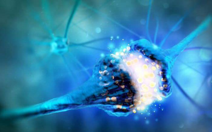 Міастенія - синдром м'язової слабкості