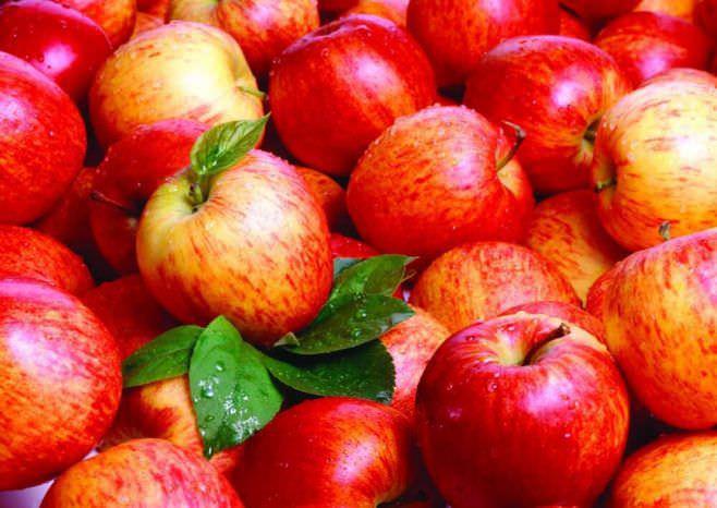 Яблука: користь і шкода
