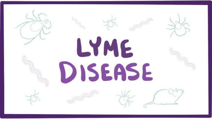Хвороба Лайма (кліщовий бореліоз)
