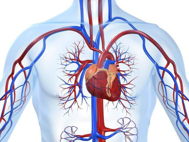 ішемічна хвороба серця