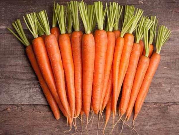 Морква - Корисні і небезпечні властивості моркви