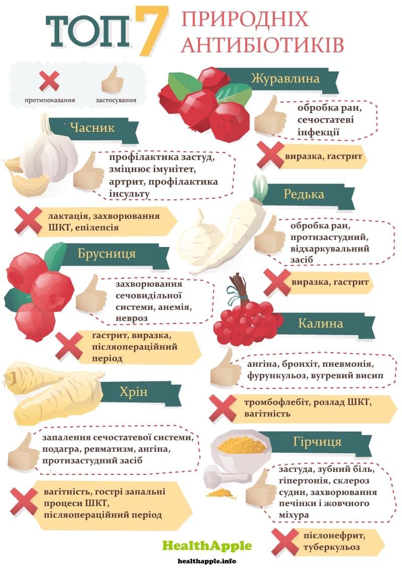 Інфографіка Топ-7 природних антибіотиків