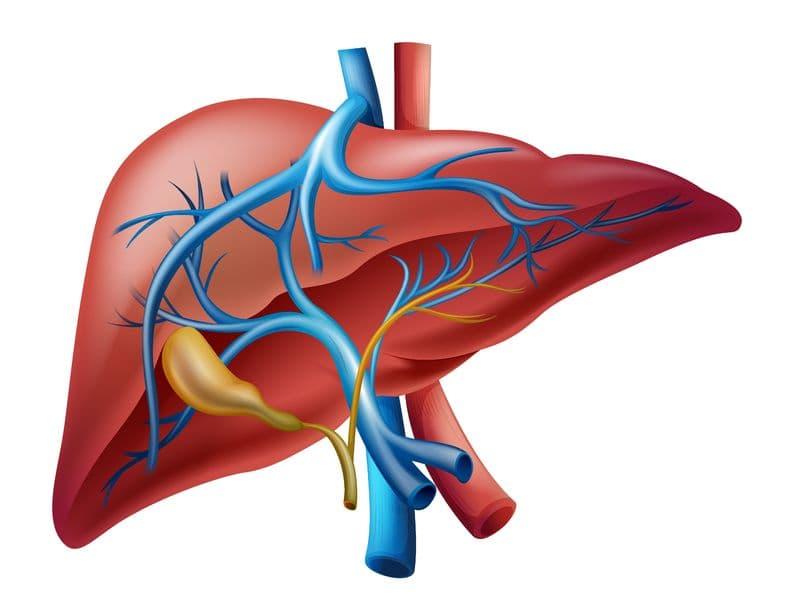 Рак жовчних проток (Холангіокарцинома)