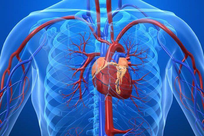 Аневризма аорты. Чем опасна эта болезнь?