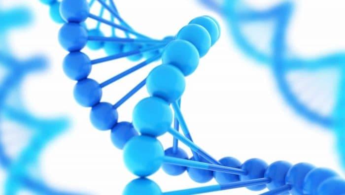 Від мами або від тата: чиїх генів (і мутацій) у дитини більше?