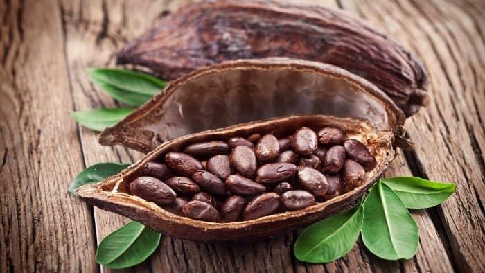 9 наукових фактів про користь і шкоду какао