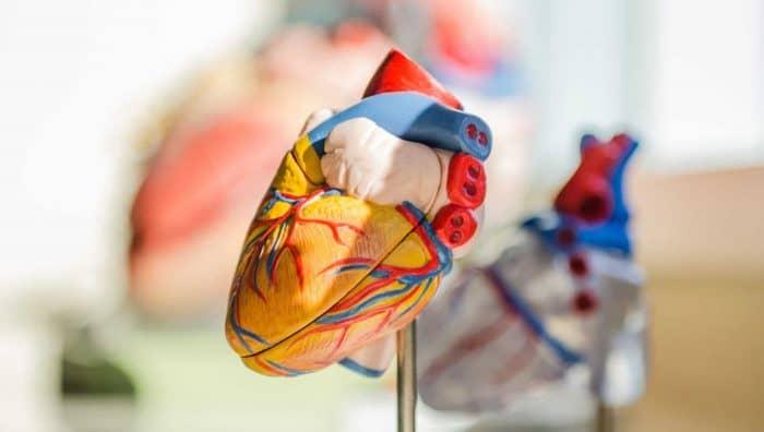 Як зрозуміти, що вам потрібно перевірити серце?