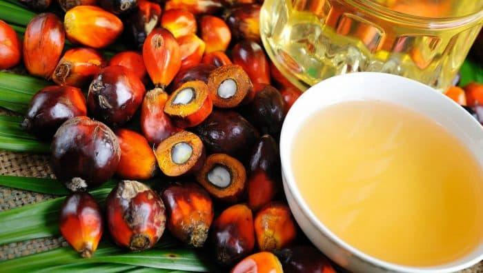 Користь і шкода пальмової олії для здоров'я людини