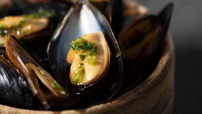 Якими корисними властивостями володіють мідії: користь і шкода молюсків