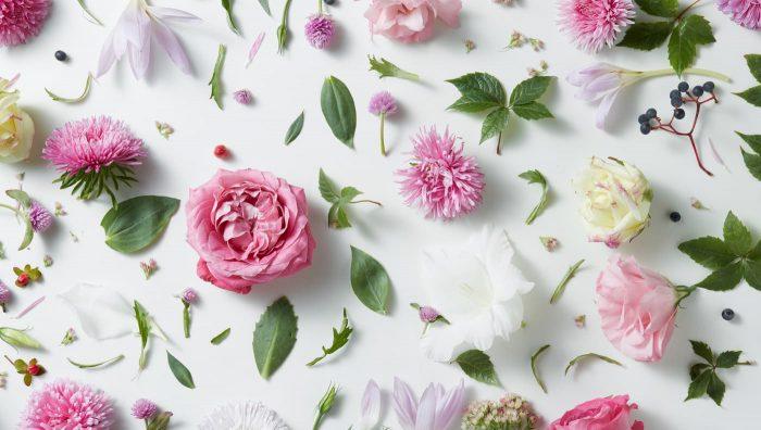 Три найпопулярніші помилки при виборі живих квітів: чек-лист для самоперевірки