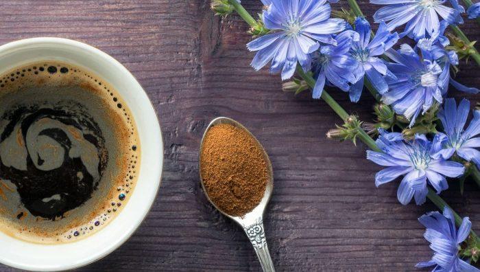 Альтернатива кави та не тільки. Чим корисний цикорій